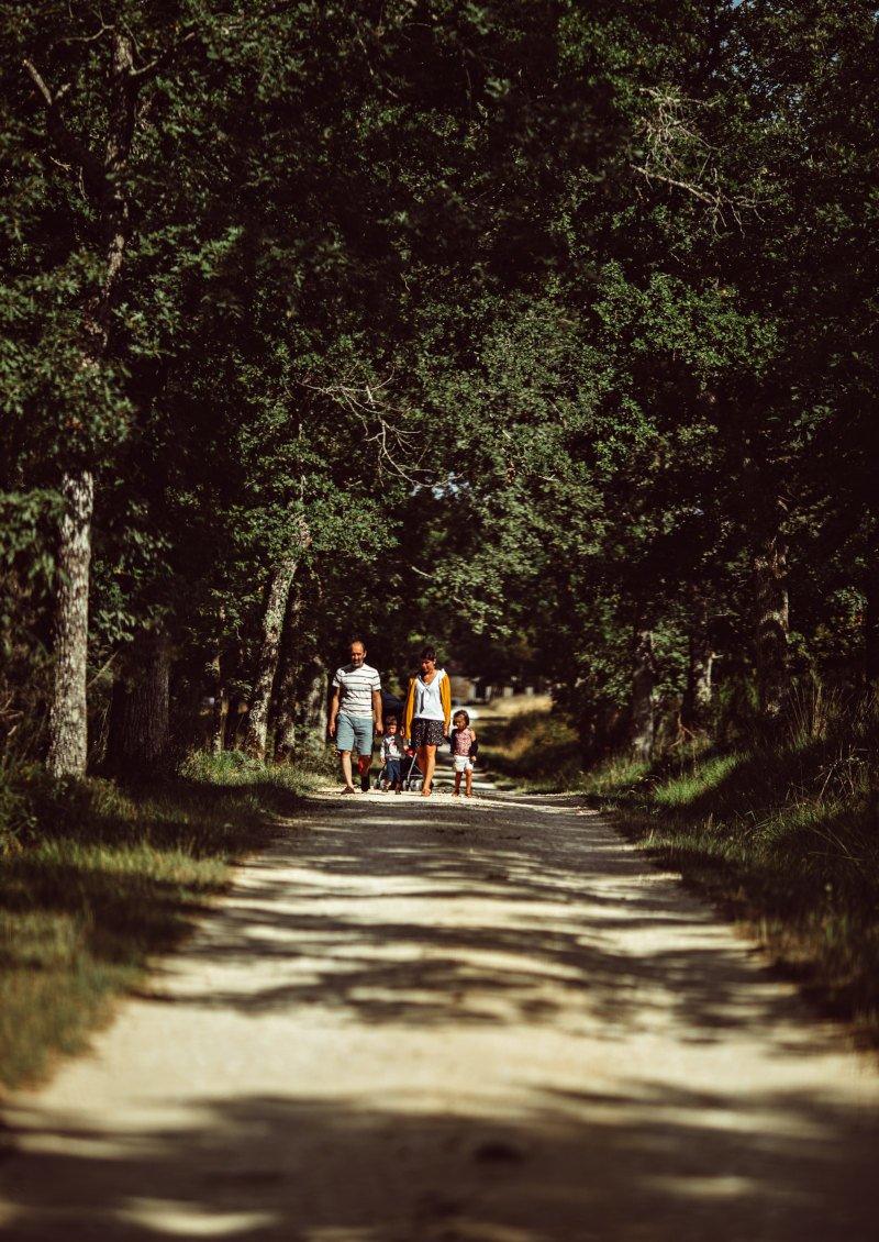 Famille qui se promène en forêt
